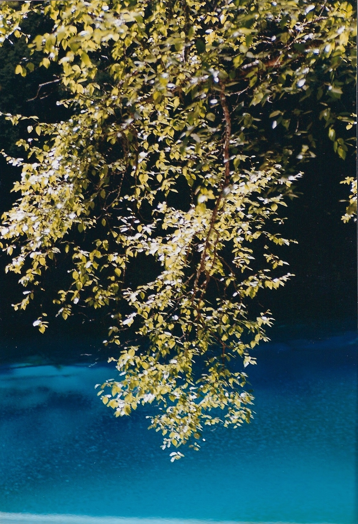 2000 China JiuZhaiGou 1.jpg