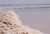 Haining Bore Tide